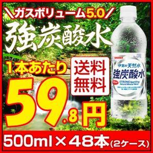 伊賀の天然水で作った 強炭酸水 500ml×48本 炭酸水 ...