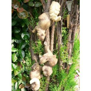 りすの置物 木登りリス3匹セット N11122 動物 オーナ...