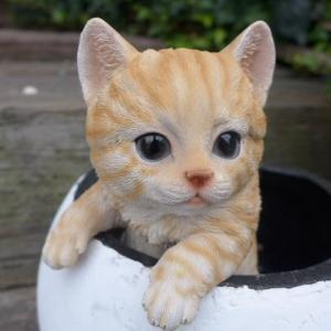 商品詳細商品説明猫の置物 ハンギングキャット 茶トラの子猫でございます。鉢やプランターその他に引っ掛...