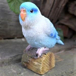 商品詳細商品説明小鳥の置物 インコの置物 マメルリハでございます。大きさもほどよく、本物みたいなきれ...