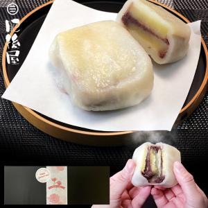 いきなり団子(プレーン味)10個セット 贈答にもぴったり 送料無料 (東北・離島を除く)