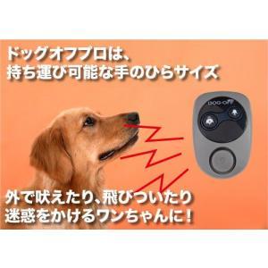 犬・しつけ用品 ドッグオフプロ|walajin-dog
