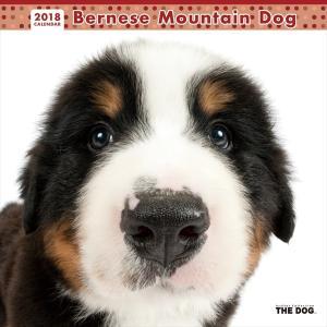 THE DOG 2018年 カレンダー バーニーズマウンテンドッグ|walajin-dog