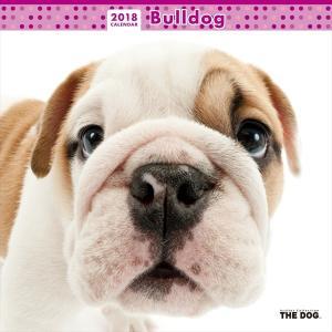 THE DOG 2018年 カレンダー ブルドッグ カレンダー |walajin-dog