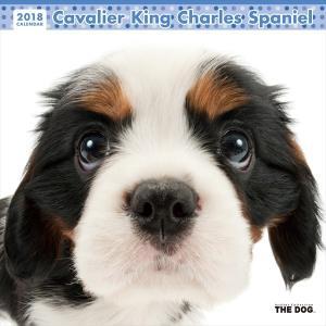 THE DOG 2018年 カレンダー キャバリアキングチャールズスパニエル |walajin-dog