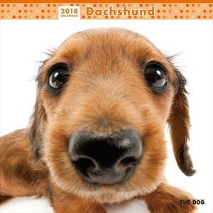 THE DOG 2018年 カレンダー ダックスフンド...