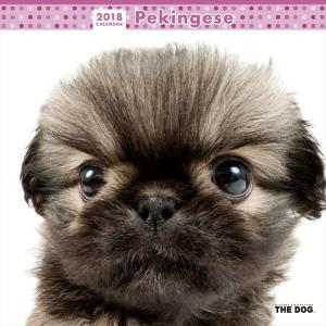 THE DOG 2018年 カレンダー ペキニーズ ...