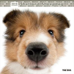 THE DOG 2018年 カレンダー シェットランドシープドッグ |walajin-dog