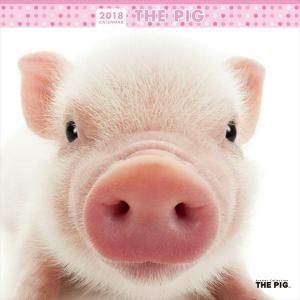 THE PIG 2018年 ブタ カレンダー|walajin-dog