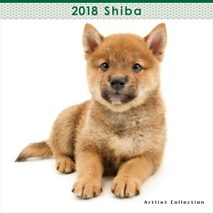 THE DOG 2018年 柴/しば ミニ カレンダー|walajin-dog