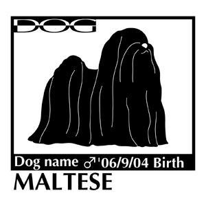 犬 ステッカーA マルチーズ NEW Lサイズ walajin-dog