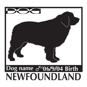 犬 ステッカーA ニューファンドランド Mサイズ|walajin-dog