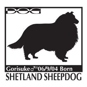 犬 ステッカーA シェットランドシープドッグのグッズ Mサイズ|walajin-dog