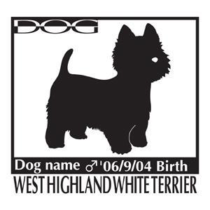 犬 ステッカーA ウエスト・ハイランド・ホワイト・テリア・ ウエスティー NEW Mサイズ|walajin-dog