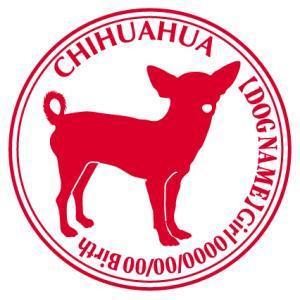 チワワ スムース正面 犬 ステッカー Cパターン |walajin-dog