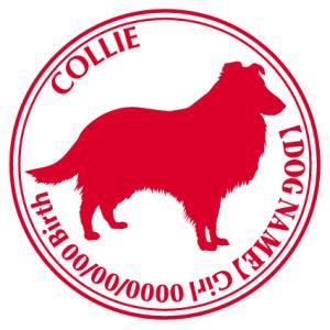 コリー 犬 ステッカー Cパターン  walajin-dog