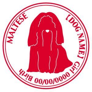 マルチーズ 犬 ステッカー Cパターン  walajin-dog