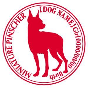 ミニチュアピンシャー 犬 ステッカー Cパターン |walajin-dog