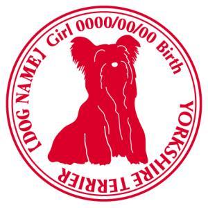 ヨークシャーテリア 犬 ステッカー Cパターン  walajin-dog