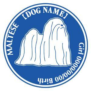 マルチーズnew 犬 ステッカー Dパターン  walajin-dog
