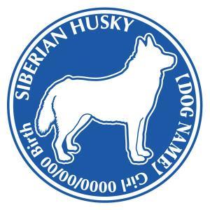 シベリアンハスキー 犬 ステッカー Dパターン |walajin-dog