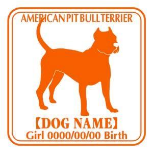 ドッグシールステッカーE アメリカンピットブルテリア 斜めタイプ|walajin-dog