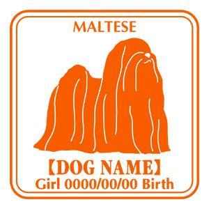 ドッグシールステッカーE マルチーズ NEW walajin-dog