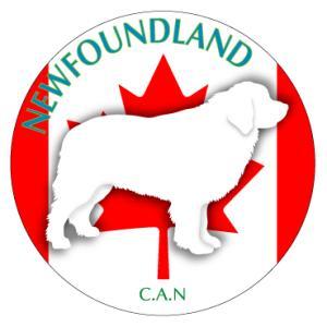 ドッグシールステッカーまる ニューファンドランド Mサイズ(2枚1セット)|walajin-dog