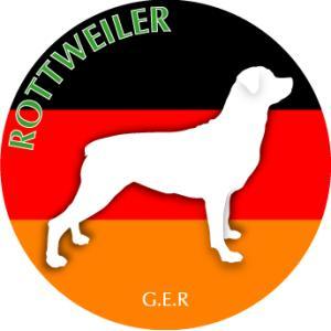 ドッグシールステッカーまる ロットワイラー Mサイズ(2枚1セット)|walajin-dog