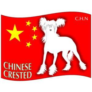 ドッグシールステッカーはた チャイニーズクレステッドドッグ Mサイズ 2枚1セット|walajin-dog