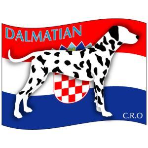 ドッグシールステッカーはた ダルメシアン 柄入りMサイズ 2枚1セット|walajin-dog