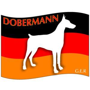 ドッグシールステッカーはた ドーベルマン Lサイズ walajin-dog