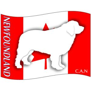 ドッグシールステッカーはた ニューファンドランド Mサイズ(2枚1セット)|walajin-dog