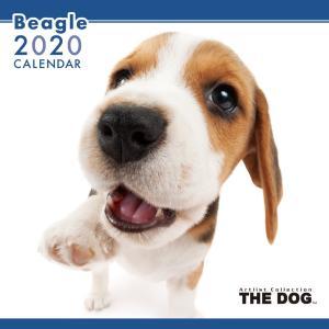 THEDOG カレンダー ビーグル 2020年カレンダー 犬 グッズ 壁掛け|walajin-dog
