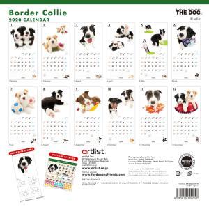 THEDOG カレンダー ボーダーコリー 2020年カレンダー 犬 グッズ 壁掛け|walajin-dog|03