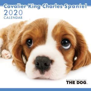 THEDOG カレンダー キャバリアキングチャールズスパニエル 2020年カレンダー 犬 グッズ 壁掛け|walajin-dog