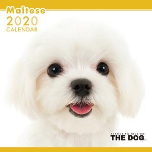 THEDOG カレンダー マルチーズ 2020年カレンダー 犬 グッズ 壁掛け|walajin-dog