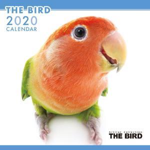 THEBIRD 鳥 カレンダー 2020年カレンダー グッズ 壁掛け 小鳥|walajin-dog