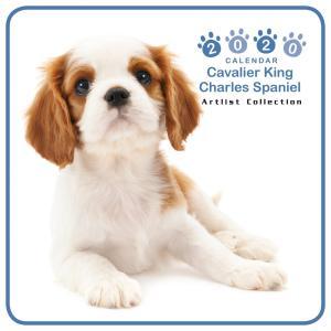 THEDOG ミニカレンダー キャバリアキングチャールズスパニエル 2020年カレンダー グッズ 犬|walajin-dog