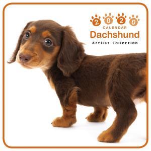 THEDOG ミニカレンダー ダックスフンド 2020年カレンダー グッズ 犬|walajin-dog