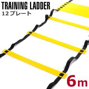 ラダー トレーニング 6m プレート12枚 トレーニングラダー サッカー フットサル ラダートレーニ...
