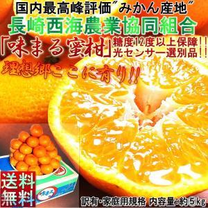 味まる みかん 長崎県産 5kg JA長崎西海 糖度12度以上100%糖度保障 訳あり 糖度センサー認証蜜柑