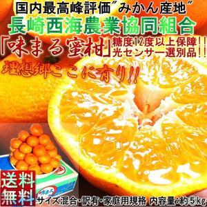 【サイズ厳選訳あり】 味まる みかん 長崎県産 5kg JA長崎西海 糖度12度以上100%糖度保障 訳あり 糖度センサー認証蜜柑