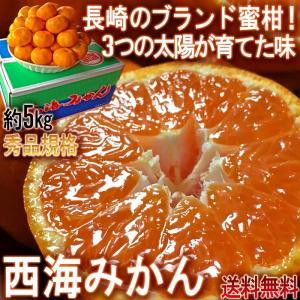 みかん 長崎県産 JA西海 秀品 5kg 糖度センサー箱 農協クオリティー 送料込み 産地劇押し