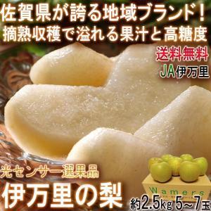 佐賀の梨 幸水・豊水 佐賀県産 JAさが 約2kg 5〜7玉...