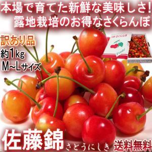 佐藤錦 さくらんぼ 約1kg M〜Lサイズ 訳あり品 山形県...