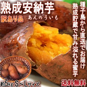 産地直送 安納芋 さつまいも 5kg S〜Lサイズ 鹿児島県...