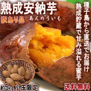 産地直送 安納芋 さつまいも 5kg 小玉限定 3S〜Sサイ...