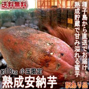 産地直送 安納芋 さつまいも 10kg 小玉限定 3S〜Sサ...