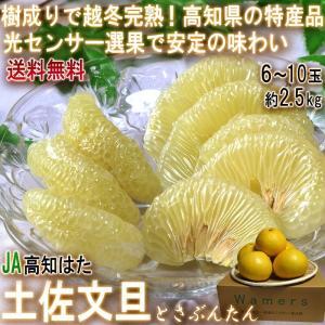◆土佐文旦の食べ方  すぐに食べてもフレッシュでサクサクとした味わいが美味しい文旦ですが、皮に皺が出...